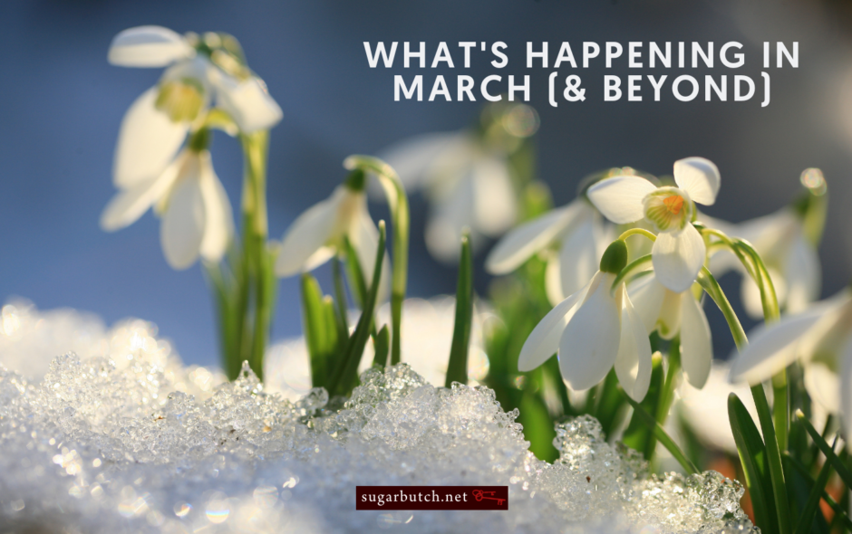 What's Happening in March (and Beyond): Best Lesbian Erotica Readings!